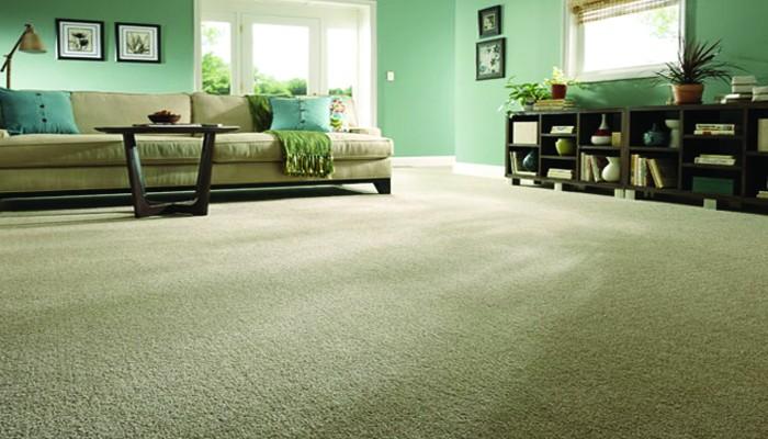 6. Stainmaster Carpet